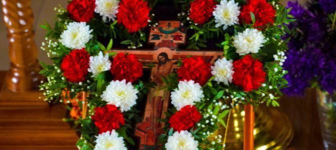 Кресту Твоему покланя́емся, Владыко